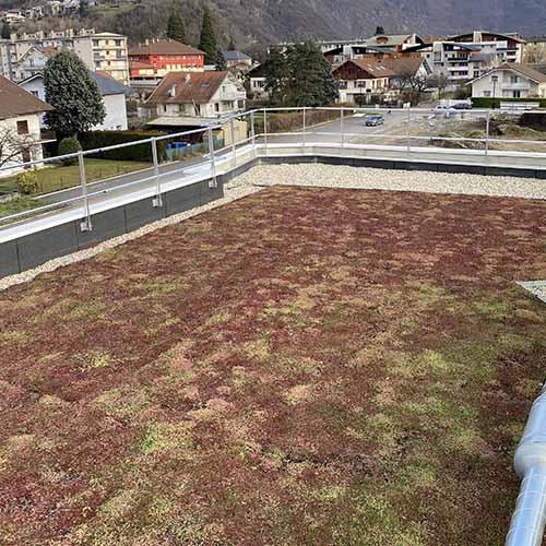 Végétalisation toiture - Goncalves Frères Etanchéité